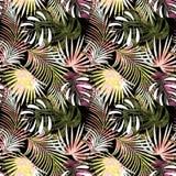 Reticolo tropicale senza giunte Foglie variopinte, foglie di palma su un fondo scuro Immagini Stock Libere da Diritti