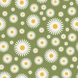 Reticolo verde floreale Fotografie Stock
