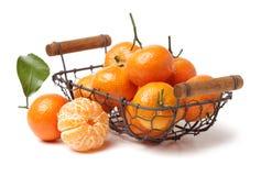 Reticulata цитруса апельсина мандарина, также известное как мандарин или мандарин Стоковое Изображение
