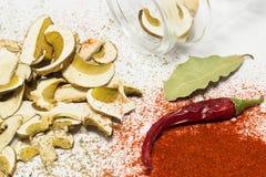 Reticulatus do boleto dos cogumelos secados Imagem de Stock