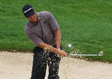Retief Goosen in the sand trap Royalty Free Stock Photography