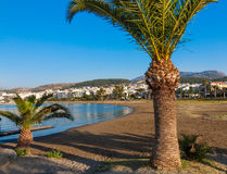 Retimnon bay. Palms on the beach of Retimnon bay. Crete, Greece Stock Images