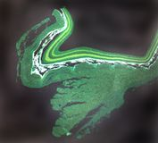 Retina mammalian. A low power microscopic flourescent view of a mammalian retina Royalty Free Stock Photo