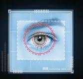 Retina scan Stock Photos