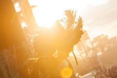 Retire o festival 2015 - dançarino no traje indiano no nascer do sol sobre Foto de Stock Royalty Free