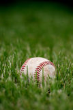 Retired baseball. A used baseball lies in the grass after the game Royalty Free Stock Images
