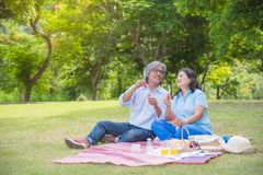 Free Retired Couple Blowing Bubbles In Park Royalty Free Stock Photos - 120355948