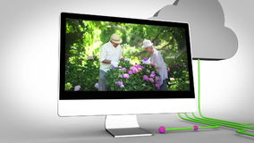 Retired couple gardening stock video footage