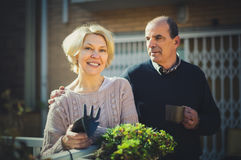 Retired couple gardening. Retired men and women gardening in a patio near their home royalty free stock image