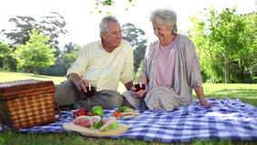 Retired couple having a picnic together Stock Photography