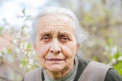 Retired elderly woman Stock Images