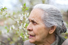Retired elderly woman Royalty Free Stock Images