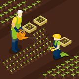 Retired Farmers Life Isometric Banner  Isomentric Royalty Free Stock Photo