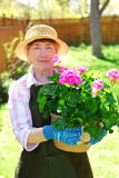 Retired gardener Stock Image