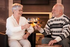 Retired husband and wife drinking wine together Royalty Free Stock Image