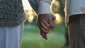 Retired man holding woman hand, romantic date in park, grandparents love. Stock footage stock footage