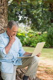 Retired man leaning against tree with a laptop Royalty Free Stock Photos