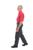 Retired man walking away. Retired man in red shirt walking away isolated over white background Stock Images