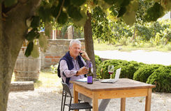 Retired professional man. Portrait of retired winemaker sitting at vineyard in front of his laptop and making call while tasting wine. Small business Stock Photo