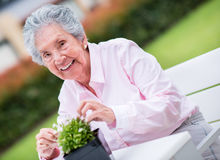 Retired woman fixing a plant Stock Photos