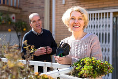 Retired woman gardening flowers. Retired women with tools for gardening in patio ourdoors near flowers her husband is in the background Stock Image
