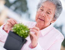 Retired woman gardening Stock Photo