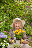 Retired woman working in the garden Royalty Free Stock Image