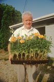 A retiree carrying a tray of flowers Stock Image