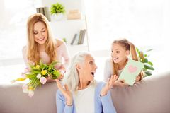Retirement friendship motherhood happiness generation pensioner royalty free stock photos