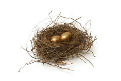 Retirement Fund. A couple gold nest eggs for the idea of a wealthy retirement fund Royalty Free Stock Photography