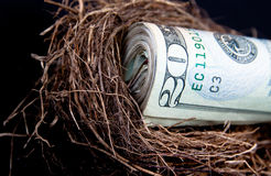 Retirement Nest Egg Royalty Free Stock Images