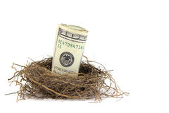 Retirement Nest Egg Stock Images