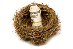 Retirement Nest Egg. A bundle of money stored in a nest for retirement.  Isolated.  Studio shot Royalty Free Stock Photo