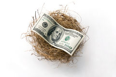 Retirement nest egg 2. A roll of hundred US dollar laying in bird nest representing retirement nest egg Royalty Free Stock Photography