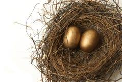 Retirement Nest Egg Royalty Free Stock Photos