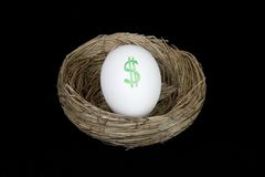 Retirement nest egg dollars Royalty Free Stock Photo