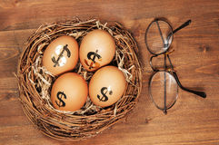 Retirement Nest Egg. With eye glasses royalty free stock image