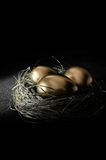 Retirement Planning II. Concept image for retirement planning. Creatively lit golden goose eggs in a real birds nest representing client investments. Copy space Royalty Free Stock Images
