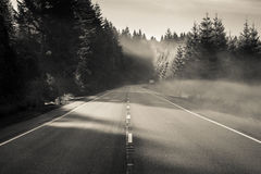 Retirement Road. Oregon Highway 26 W on foggy morning Royalty Free Stock Images