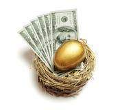 Retirement savings golden nest egg. Gold nest egg and money concept for retirement savings and financial planning Stock Photography