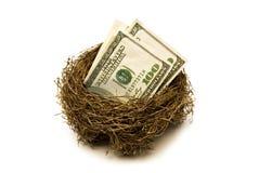 Retirement Savings Nest. Folded hundred dollar bills put away for retirement.  Everyone needs a little nest egg Stock Photography
