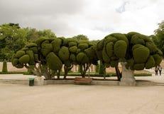 retiro för delmadrid parco Royaltyfri Fotografi
