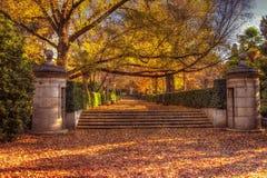 Retiro park. Autumn in Madrid Retiro park Stock Image