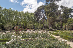 Retiro Park in Madrid Stock Photos