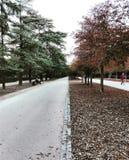 Retiro park Madryt Hiszpania obrazy stock