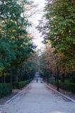 retiro parque madrid del Стоковое Фото
