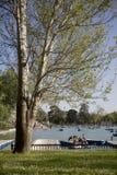 Retiro's park lake in Madrid Royalty Free Stock Image
