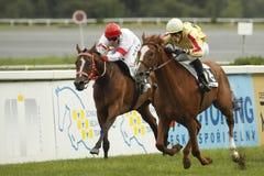 Retourn et principalement haut dans la course de chevaux de rue Leger Photo libre de droits
