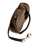 Retractable leash for dog Royalty Free Stock Photo