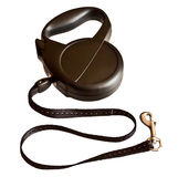 Retractable leash for dog Stock Image